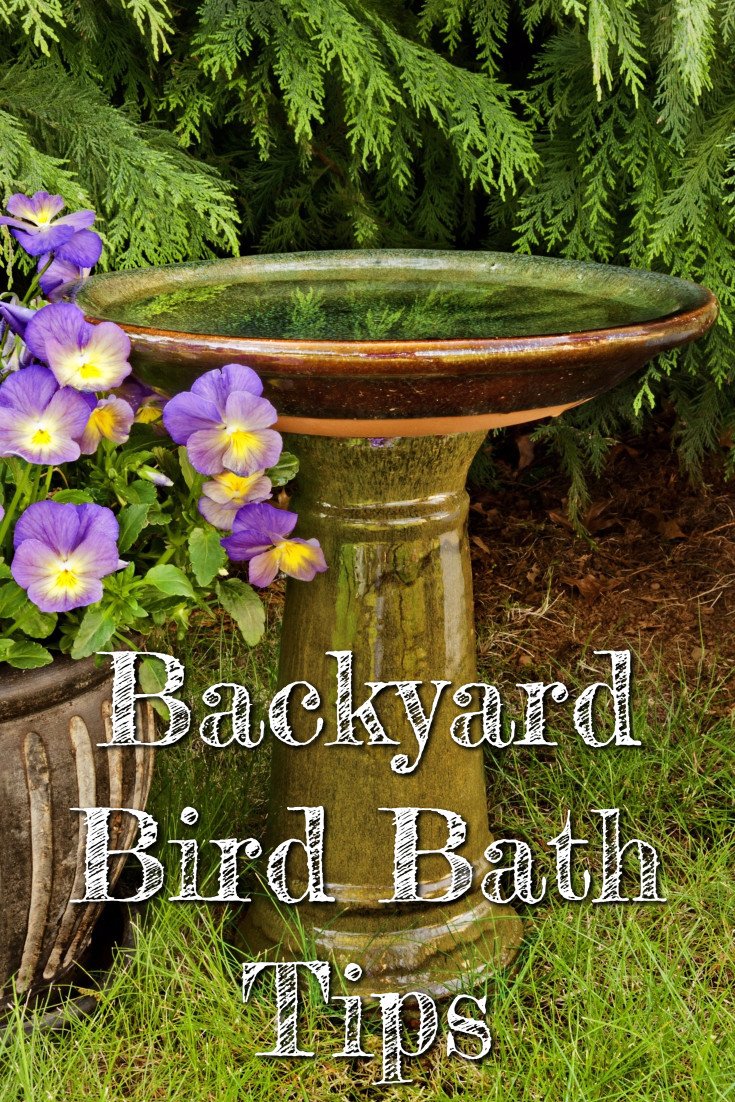 Backyard bird baths – do you REALLY need a bird bath in your yard? Do birds even need water? What is the best bird bath for attracting birds to your yard? What type of water do birds need? Let's talk about all that in these Backyard Bird Bath Tips