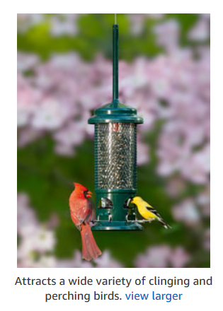 best bird feeder reviews