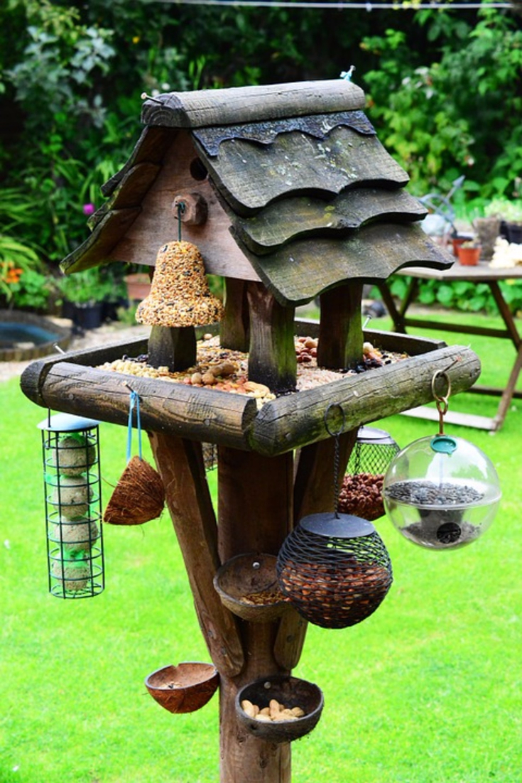 LOVE this bird feeding station! What an awesome bird feeder set up in the backyard